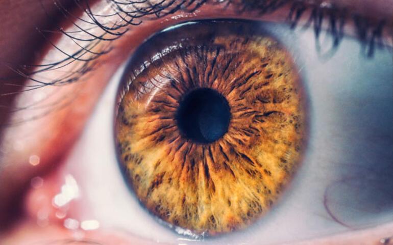 Gözümüz hakkında