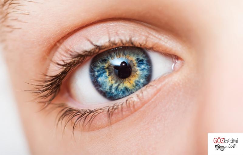 Sarı-nokta-hastalığı-nedir